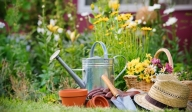 photo of a flower garden and gardening tools